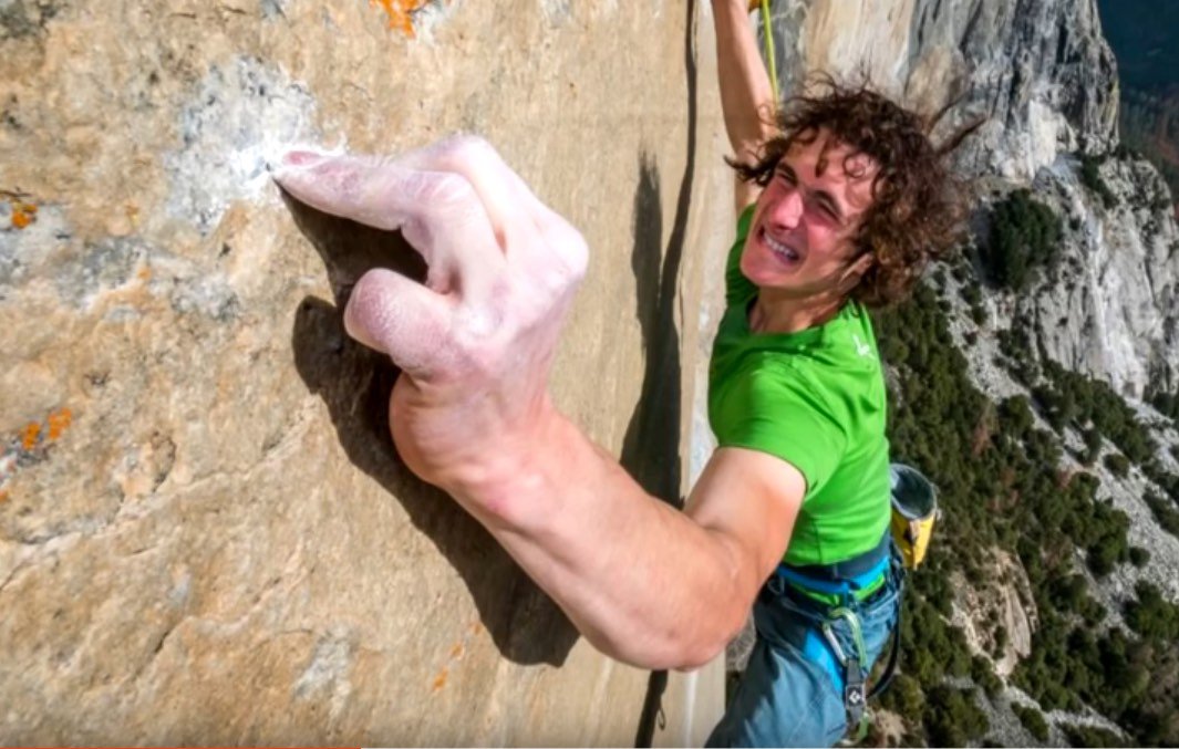 adam dawn wall